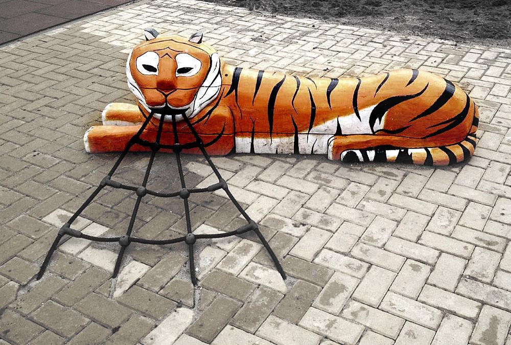 paradiso_tigre_con_red_Samia_01